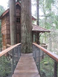 Best Treehouse Images About Tree Houses Ziplines On Pinterest Treehouse And