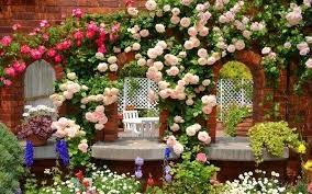start a garden for beginners u2013 exhort me