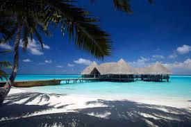 beaches bungalows palm beach sand ocean trees beautiful nature