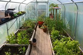 greenhouse for vegetable garden how to start growing vegetables start small my shetland garden