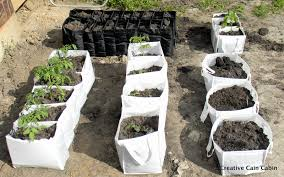creative vegetable gardening vegetable garden in a bag creative cain cabin