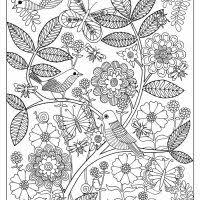 321 coloring pages adults images coloring