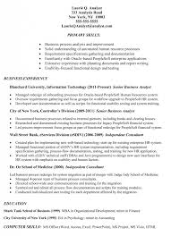 bsa analyst sample resume example of simple cover letter for job