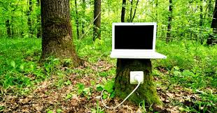 securing sap systems your company s tree of souls