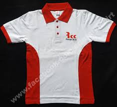 cotton polo t shirts in two color combination with logo embroidery