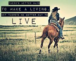 mudding quotes for girls 415 best my southern ways images on pinterest country