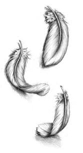 25 feather drawing ideas feather sketch
