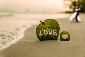 Photography Lovers Wallpaper Leaf Lovers Heart Beach Sea Love Nature Coast