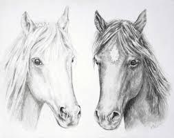 mustang horse drawing horse drawing wall art horses pencil drawing horse sketch