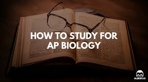 how to study for ap biology albert io