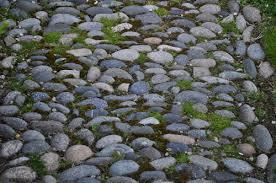 What Is A Rock Garden Gray Rock Garden Paths Katy Elliott