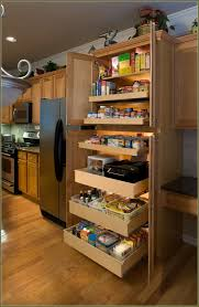 Kitchen Cabinets Slide Out Shelves How To Build A Tall Pantry Cabinet Best Home Furniture Decoration