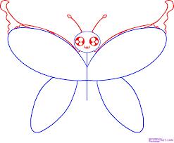 draw a cartoon butterfly