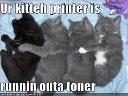 I Can Has Cheezburger Meme - favorite lol cats from i can has cheezburger discernit