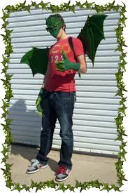 Toothless Dragon Halloween Costume 22 Images Costumes