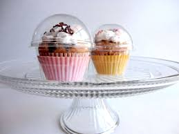 cupcake favor boxes clear plastic containers 24