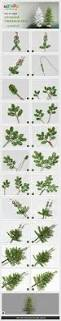 32 best christmas diy creations images on pinterest