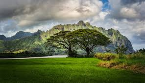 Hawaii mountains images Images hawaii oahu nature mountains scenery grass clouds jpg