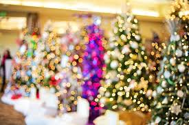 free photo christmas trees lights twinkle free image on