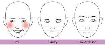 human anatomy fundamentals mastering expressions