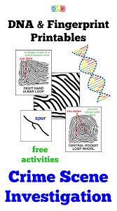 260 best forensic science images on pinterest forensic science