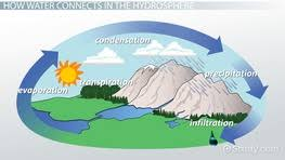 biosphere definition u0026 explanation video u0026 lesson transcript