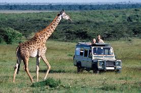 safari jeep craft the best safari itineraries in tanzania