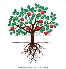 roots clipart apple tree pencil and in color roots clipart apple