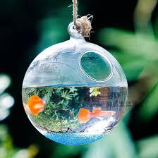 round bottom glass terrarium aquarium hanging glass globe fish