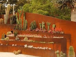 desert xeriscape and rock gardens diy
