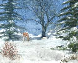 wallpaper desktop winter scenes winter animal scenes wallpaper modafinilsale