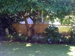 bamboo reed garden fence home u0026 gardens geek