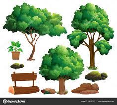 different types of trees different types of trees and garden elements stock vector