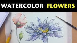 how to draw and paint flowers with watercolor u0026 ink youtube
