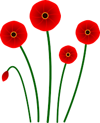 red poppy flowers free clip art
