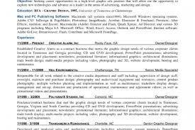 Resume Professional Statement Examples by Sample Executive Summary Resume Examples Summary Resume Writing