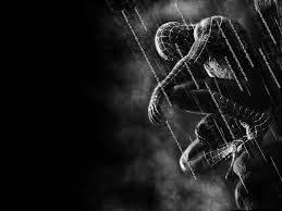 25 spiderman pics ideas spiderman pictures