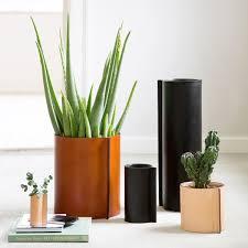 hold me tight vases black great dane