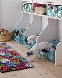 chambre pour chien chien chambre pour chien