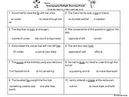 Meaning Words Worksheets Homographs Meaning Words Assessment By Amanda Woods Tpt