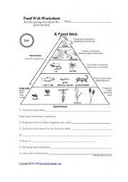 ocean food chain worksheet free worksheets library download and