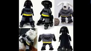 Ebay Halloween Props 10 Top Trending Halloween Costumes On Ebay U0026 Top Picks For Your Pet