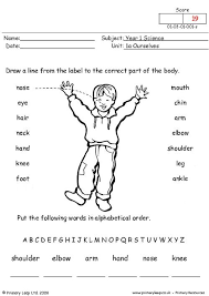 primaryleap co uk parts of the body worksheet english