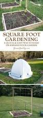 Intensive Gardening Layout by 17 Best Images About Intensive Gardening Methods On Pinterest