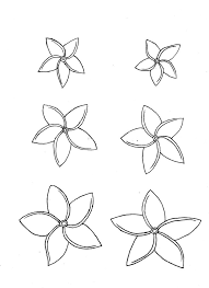 11 images of plumeria flower coloring pages plumeria flower