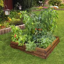 makeovers and decoration for modern homes vegetable garden