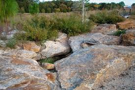 Clemson Botanical Garden by Clemson University Botanical Garden Granitic Outcrop Earth