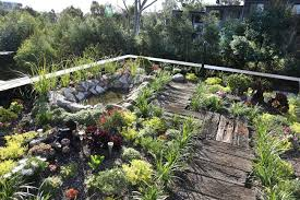 Roof Garden Plants Greenroofs Com Projects Forest Lodge Eco House Green Roofs