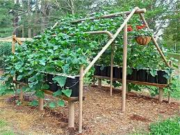 Recycling Ideas For The Garden Simple Recycling Ideas For Your Garden Living Green With Baby