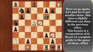 the best chess puzzles 9 another lovely study with an unusal draw